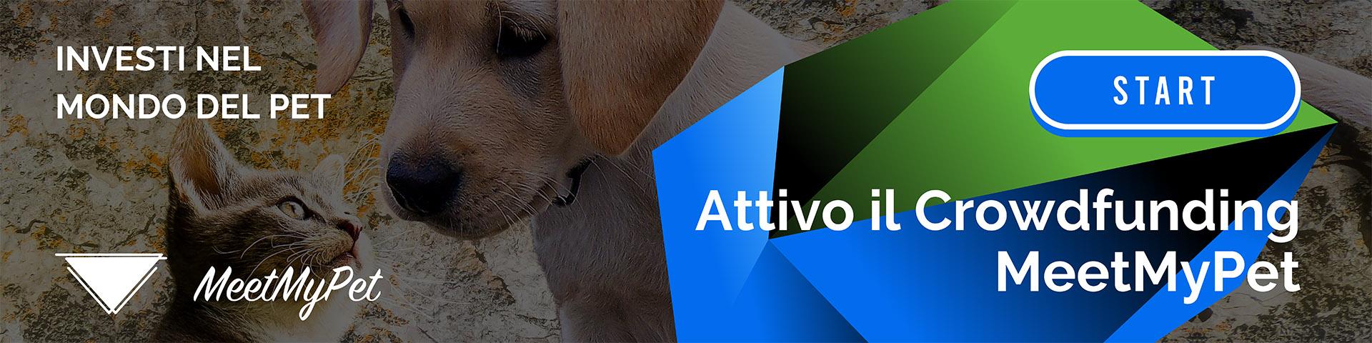 Crowdfunding Pet MeetMyPet